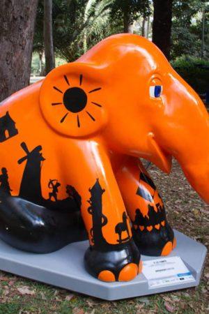 amazon-elefante-028